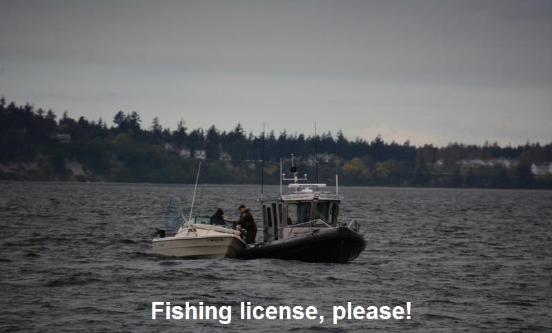 Fishing license, please!